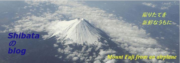 富士山画像確認テスト