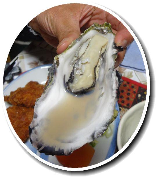 レンジ 牡蠣 殻 付き